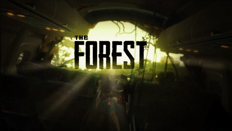 the forest co op oyun oneri - En iyi Co-op oyunlar